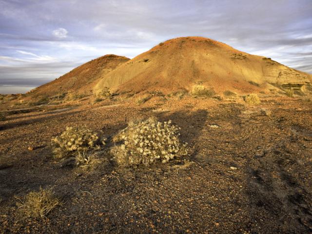 Bisti Wilderness #2 New Mexico
