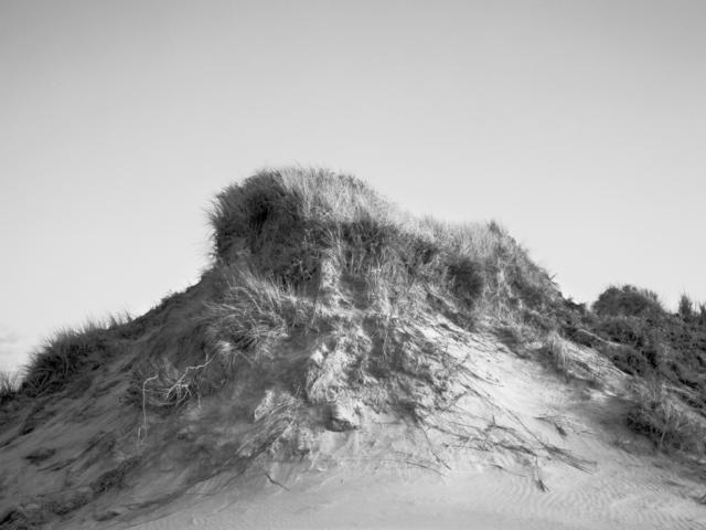 Dunes Oregon 1985