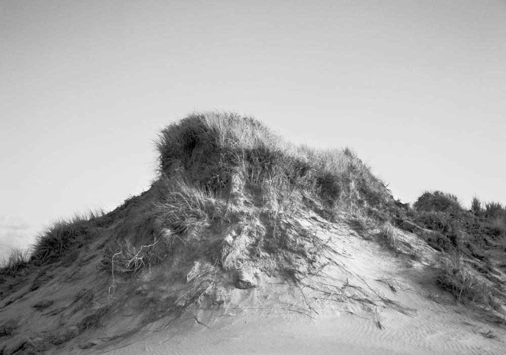 Dunes, Oregon 1985