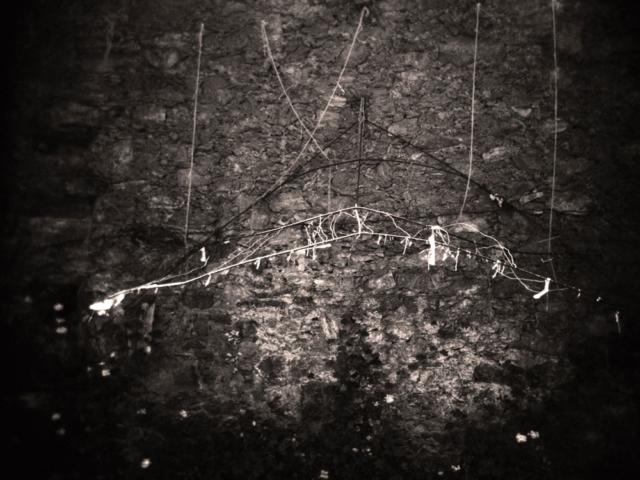Quarry #1 Mexico 1995