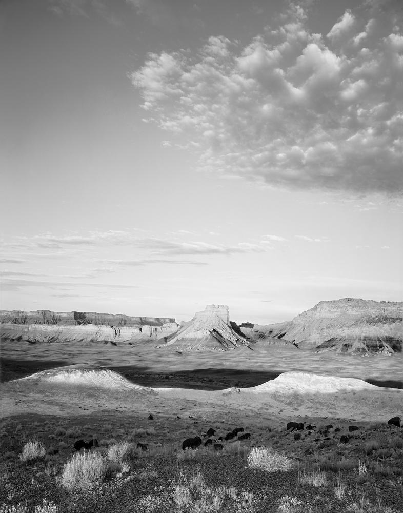 Thompson Mesa, Utah 1993