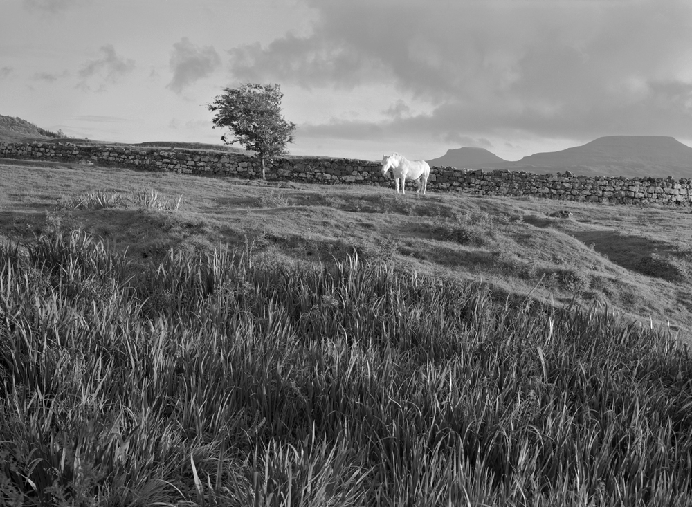 White Horse, Scotland 1987