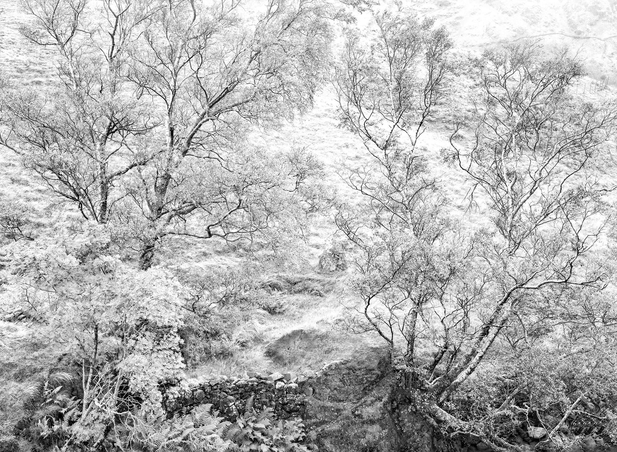 Loch Mor - arthur lazar