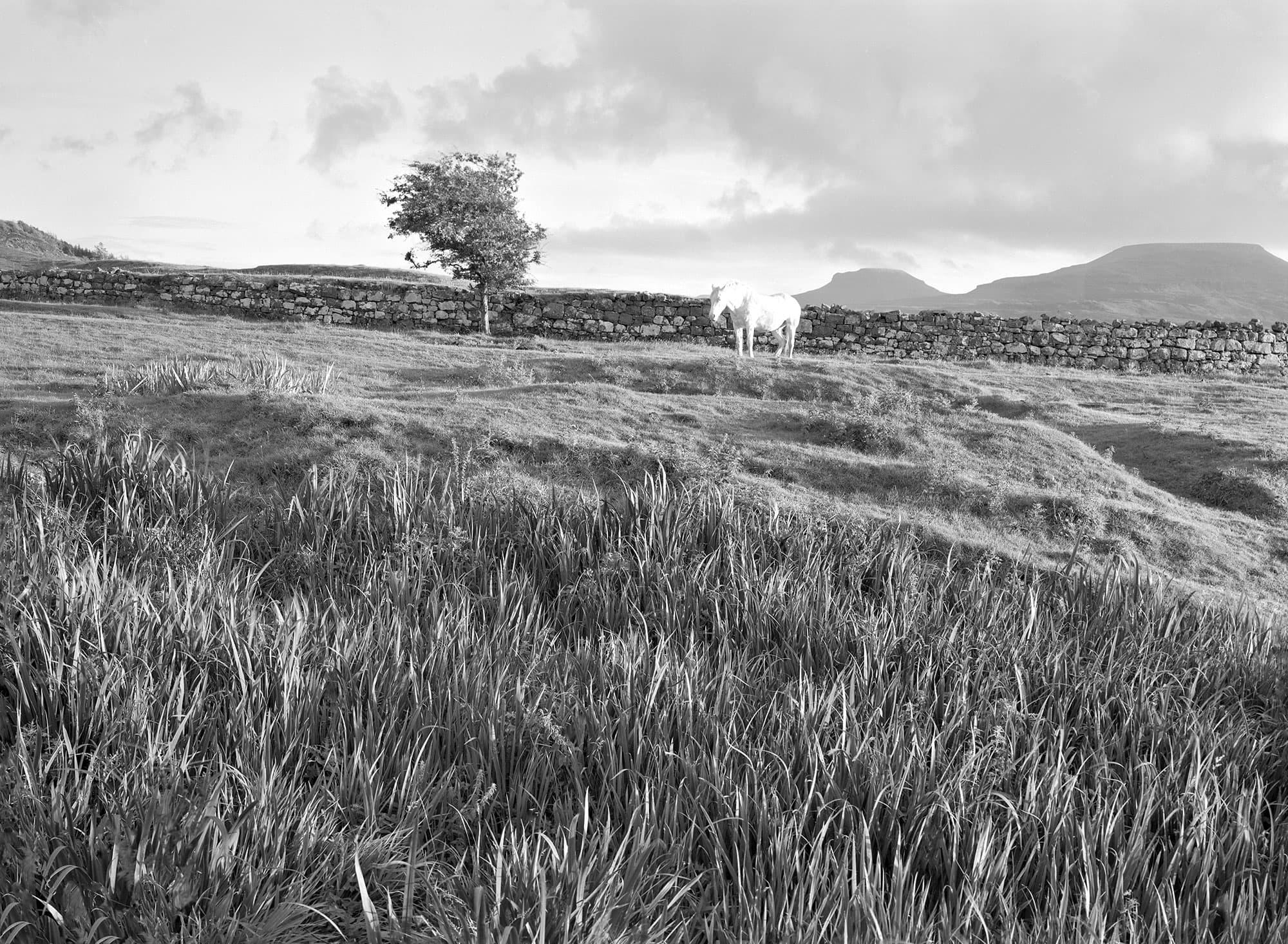 arthur-lazar-White-Horse-Skye