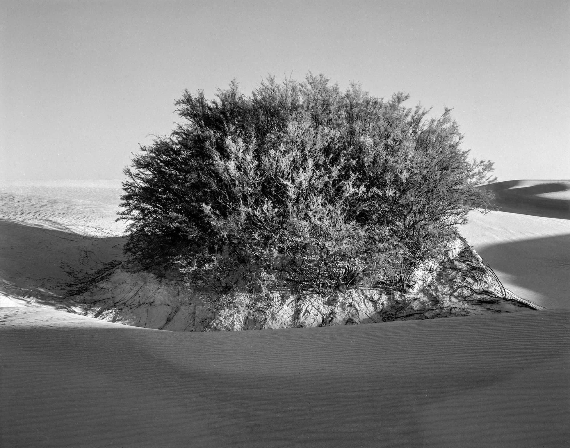 arthur-lazar-White-Sands-New-Mexico-1976