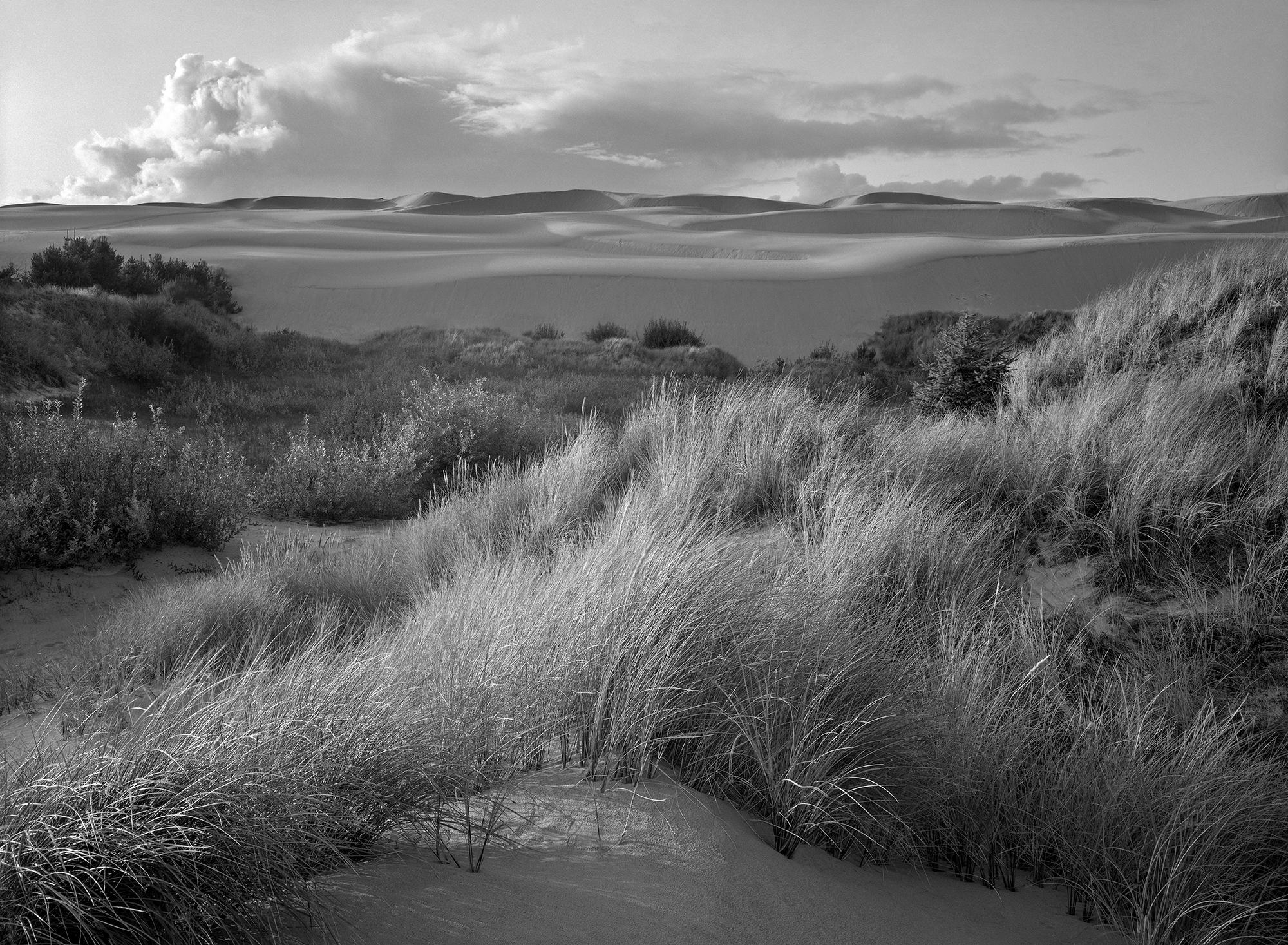 Oregon Dunes 1985 - Arthur Lazar